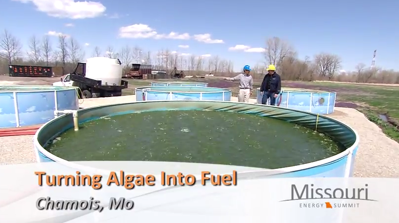 Turning algae into fuel